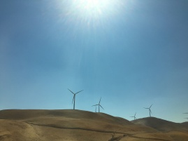 Altamont Pass Wind Farm © Brittany Webb