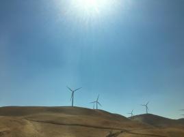 Altamont Pass Wind Farm © Brittany Webb
