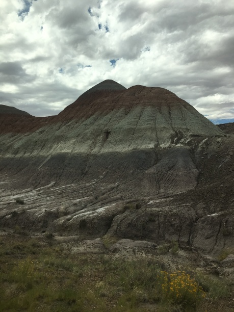 Petrified Forest National Park, Jasper Forest © Brittany Webb