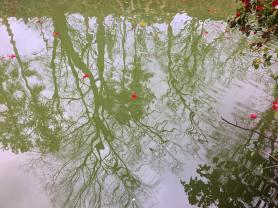 T.R. Pugh Memorial Park © Brittany Webb
